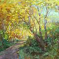 Autumn's Glow by Barbara Schilling
