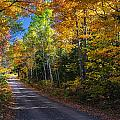 Autumns Road by Kevin Clifford