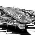 Av-8b Harrier by Dale Jackson