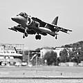 Av-8b Harrier II by Maj Seda