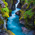Avalanche Creek by Inge Johnsson