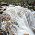 Avalanche Falls - White Mountains New Hampshire Usa by Erin Paul Donovan