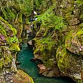 Avalanche Gorge In September by Greg Nyquist