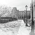 Avenue De La Louve In Black And White by Ramona Murdock