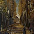 Avenue Of Poplars In Autumn by Vincent Van Gogh