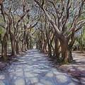 Avenue Of The Oaks by Henry David Potwin