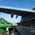 Aviation Boatswains Mate Ducks As An by Stocktrek Images