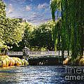 Avlon River by Ben Yassa