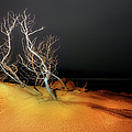 Awaiting The Light I - Outer Banks by Dan Carmichael