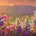 Awakening - Mt Susitna Spring - Sleeping Lady by Karen Whitworth