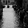 Away - Venice by Lisa Parrish