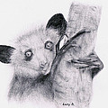 Aye-aye by Lucy D