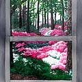 Azalea Bowl Overlook Gardens by Beth Parrish