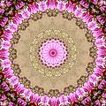 Azalea Pink Kaleidoscope by MM Anderson