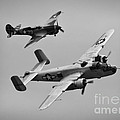 B-25 And Escort Bw by Tommy Anderson