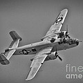 B-25 Mitchell Bw by Tommy Anderson