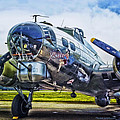 B17 Bomber Yankee Lady by Thomas Woolworth