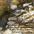 Babbling Brook William Shakespeare Quote by Barbara Snyder