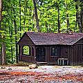 Babcock Cabin by Steve Harrington