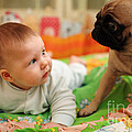 Baby And Dog by Konstantin Sutyagin