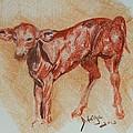 Baby Calf by Deborah Gorga