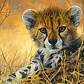 Baby Cheetah  by Lucie Bilodeau