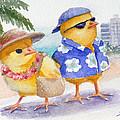 Baby Chicks In Honolulu Hawaii by Janet Zeh