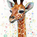 Baby Giraffe Watercolor  by Olga Shvartsur