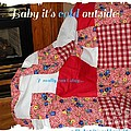 Baby It's Cold Outside Quilt  by Barbara Griffin
