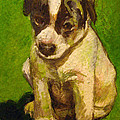 Baby Jack Russel by Donna Tucker