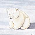 Baby Polar Bear by Brenda Bonfield