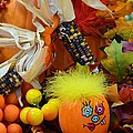 Baby Pumpkin by Richard Jenkins