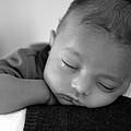 Baby Sleeps by Lisa Phillips