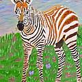 Baby Zebra by Phyllis Kaltenbach