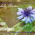 Bachelor Button by Karen Beasley