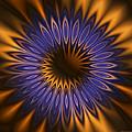 Bachelor Button Mandala by Judi Suni Hall