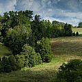 Back Pasture by Nathaniel Kidd