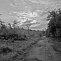 Back Road At Sunset Pocono Mountains Pennsylvania by A Gurmankin