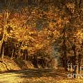 Back Roads by Lois Bryan