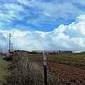 Backroads- Telephone Poles- And Barbed Wire Fences by Glenn McCarthy Art and Photography