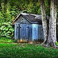 Backyard Barn by Todd Carter