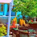 Backyard In Bright Colors by Miriam Danar