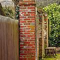 Backyard Solitude by Rick Adams