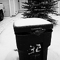 bag sticking out of litter waste bin covered in snow outside house in Saskatoon Saskatchewan Canada by Joe Fox
