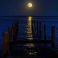 Bahamas Nocturne by Steven Richman