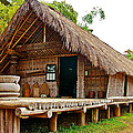 Bahnar Home With Extension As Family Grows At Museum Of Ethnology In Hanoi-vietnam  by Ruth Hager