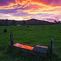 Bahrs Scrub Sunset by Gareth Mcguigan