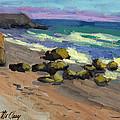 Baja Beach by Diane McClary