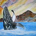Baja Breach by Patricia Beebe