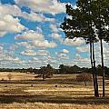 Bakers Ranch by Janal Koenig